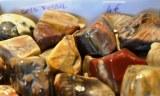 Bois Fossilisé - moyen - 10 à 15 gr