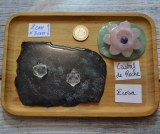 Pendentif Cristal de roche - Quartz - Icosaèdre